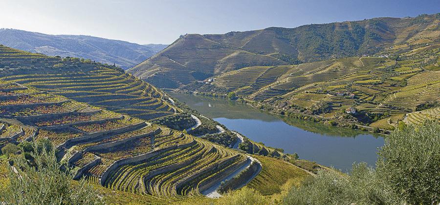 Portugal, Alto Douro, Duoro-Tal, Weinberge und Duoro nahe Regua,